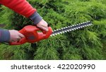 cutting a hedge with electrical ... | Shutterstock . vector #422020990