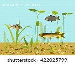 river or lake underwater world. ... | Shutterstock .eps vector #422025799