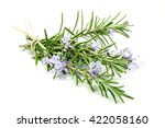 Bunch Of Rosemary Isolated On...