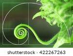 illustration of spiral... | Shutterstock . vector #422267263