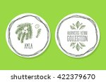 ayurvedic herb collection.... | Shutterstock .eps vector #422379670