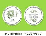 ayurvedic herb collection.... | Shutterstock .eps vector #422379670