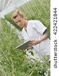 Small photo of Agronomist analysing plants in greenhouse