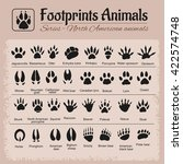 animals tracks   north american ... | Shutterstock .eps vector #422574748