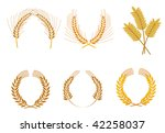 Set of cereal wreaths as an agriculture concept or logo template. Jpeg version also available - stock vector
