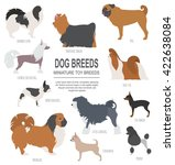 dog breeds. miniature toy dog... | Shutterstock .eps vector #422638084