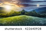 trees on hillside of mountain range with coniferous forest and flowers on meadow. composite image day and night with full moon - stock photo