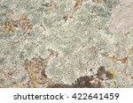 Lichens Are Symbiotic Fungi And ...