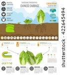 gardening work  farming... | Shutterstock .eps vector #422645494