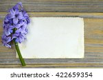 Blank Greeting Card And Blue...