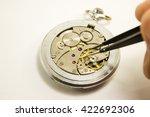 hand repairs mechanical watch... | Shutterstock . vector #422692306