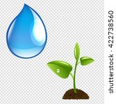 plant with water drop  isolated ... | Shutterstock .eps vector #422738560