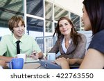 mixed group in business meeting | Shutterstock . vector #422763550