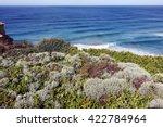 Wild Nature Of Australia...