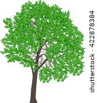 Illustration With Green Tree...