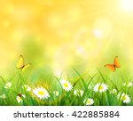 summer background  sunny day... | Shutterstock . vector #422885884