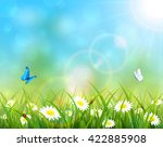 sunny summer day and blue sky... | Shutterstock . vector #422885908