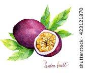 watercolor  illustration... | Shutterstock . vector #423121870