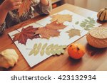 Preparations For Autumn Craft...