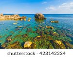 beautiful mediterranean seaside ... | Shutterstock . vector #423142234