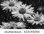 view of the flowers through the ... | Shutterstock . vector #423193054
