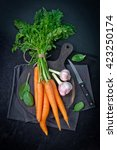 carrots  celery and other... | Shutterstock . vector #423250174