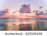 Beach On Dusk With Pink Sanset...