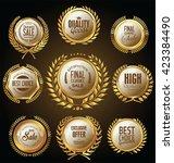 golden medallion with laurel... | Shutterstock .eps vector #423384490