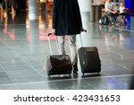 a man with two hand baggage... | Shutterstock . vector #423431653