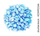 watercolor illustration of hand ... | Shutterstock . vector #423492166
