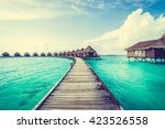 beautiful tropical maldives... | Shutterstock . vector #423526558