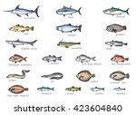 Icon Set Of Marketable Fish ...
