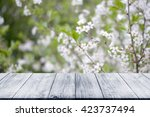 flowering branch of cherry over ... | Shutterstock . vector #423737494