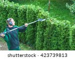 Hedge trimming, works in a garden. Professional gardener with a professional garden tools at work. - stock photo