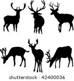 deers collection   vector | Shutterstock .eps vector #42400036