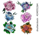 peony set colorful sketch...   Shutterstock .eps vector #424051264