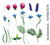 Vector Floral Set. Colorful...