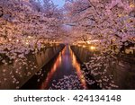 Постер, плакат: Cherry Blossoms Along the