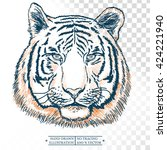 tiger portrait isolated on... | Shutterstock .eps vector #424221940