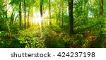 forest panorama with sun rays | Shutterstock . vector #424237198