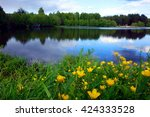 Scenic Landscape With Yellow...