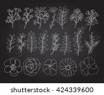 hand drawn floral elements set. ... | Shutterstock . vector #424339600