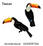 exotic bird vector illustration ... | Shutterstock .eps vector #424409764