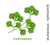 coriander herb  chinese parsley ... | Shutterstock .eps vector #424410478