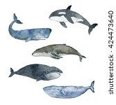 watercolor illustration whale... | Shutterstock . vector #424473640