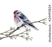 vector beautiful spring... | Shutterstock .eps vector #424493824