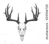 Deer Skull On White  Hand Draw...