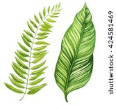 tropical leaves. watercolor... | Shutterstock . vector #424581469