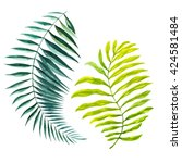 tropical leaves. watercolor... | Shutterstock . vector #424581484
