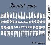 anatomically correct teeth  ... | Shutterstock .eps vector #424711894